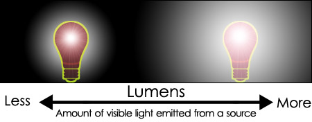 Lumens Vivarium Definition