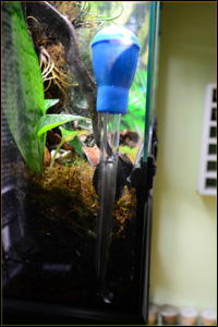 Example of vivarium waste water drainage removal