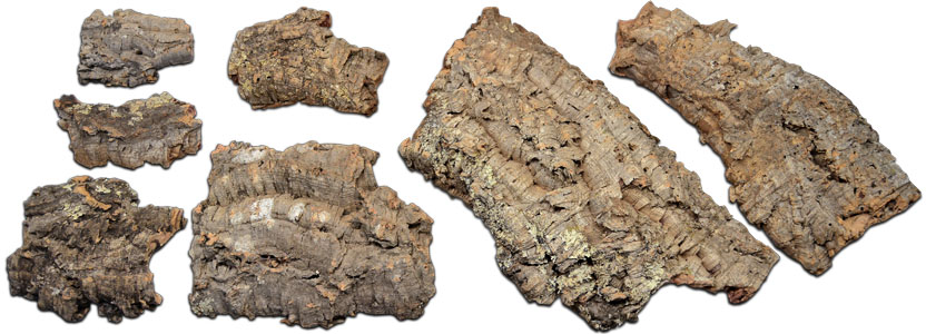 Cork Bark Flat Assortment For Vivariums & Terrariums