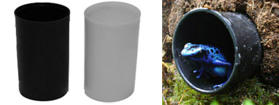 Film Canisters For Amphibian Hides And Tadpoles