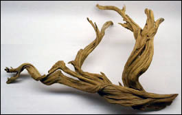 Ghost Wood For Terrariums & Vivariums