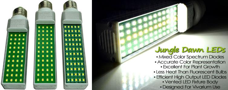 All Lighting For Bioactive Terrariums Amp Live Vivariums