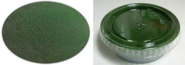 Spirulina Algae For Tadpoles And Terrariums
