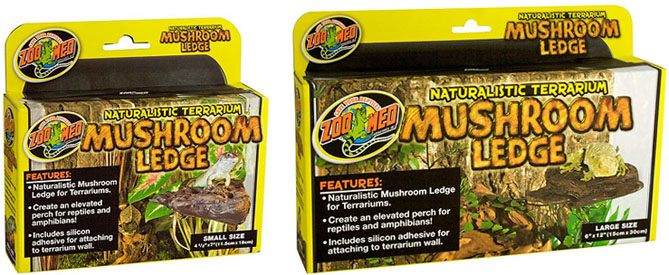 Custom Background Supplies For Bioactive Terrariums