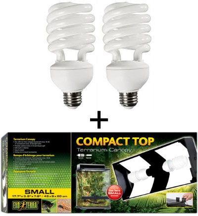 Bioactive Live Vivarium Lighting Kit With Inexpensive Fluorescent Bulbs For 18X18X12 Terrariums