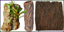 Epiphytic Plant Mounting Supplies