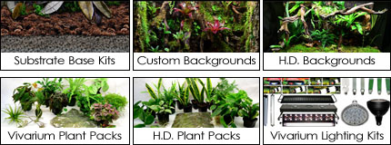 Vivarium Supplies + Kits