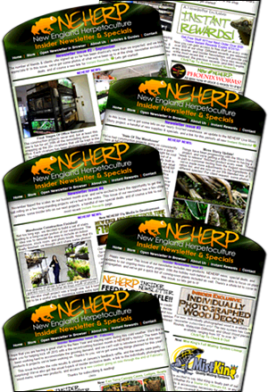NEHERP Newsletter