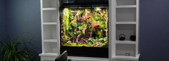 Custom Vivarium Services