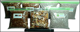 Vivarium Substrate Base Kits