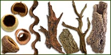All Wood Decor For Bioactive Terrariums