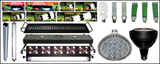 Vivarium Lighting Kits
